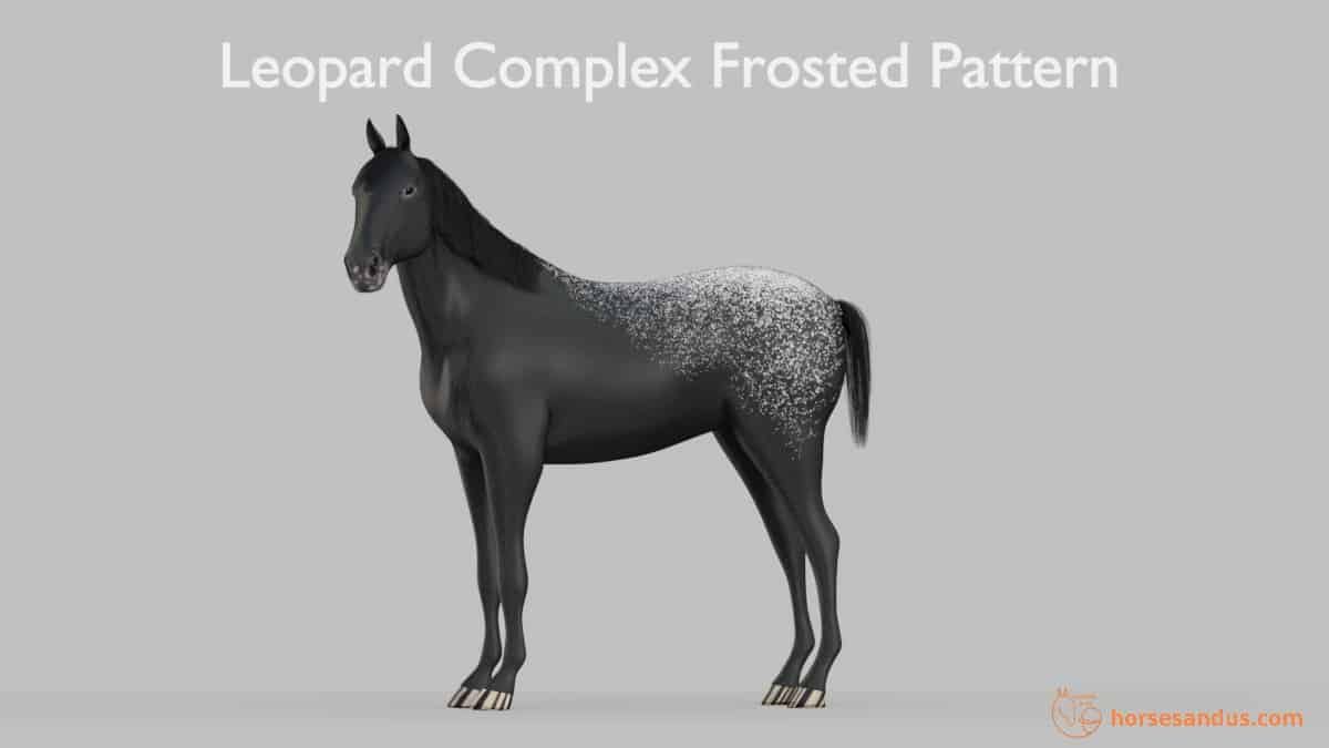 Leopard Complex Frosted Pattern